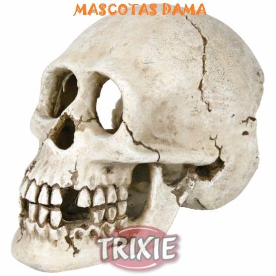 Cráneo, Decoración acuario, 15 cm