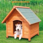 caseta de madera para perro dos aguas