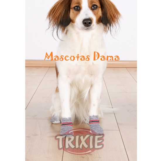 calcetines para perro
