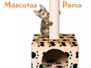 Poste rascador Zamora, 61 cm, beige/huellas