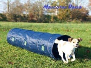 Tunel para hacer agility con tu perro