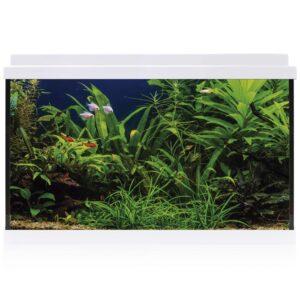 Los kit AQUA-LED son el kit más completo del mercado, incluyendo todo lo necesario para empezar un acuario desde cero.