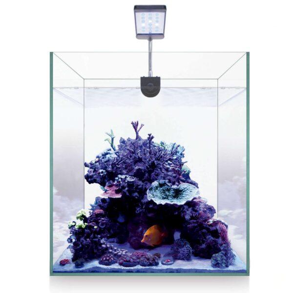 Kit nano marine