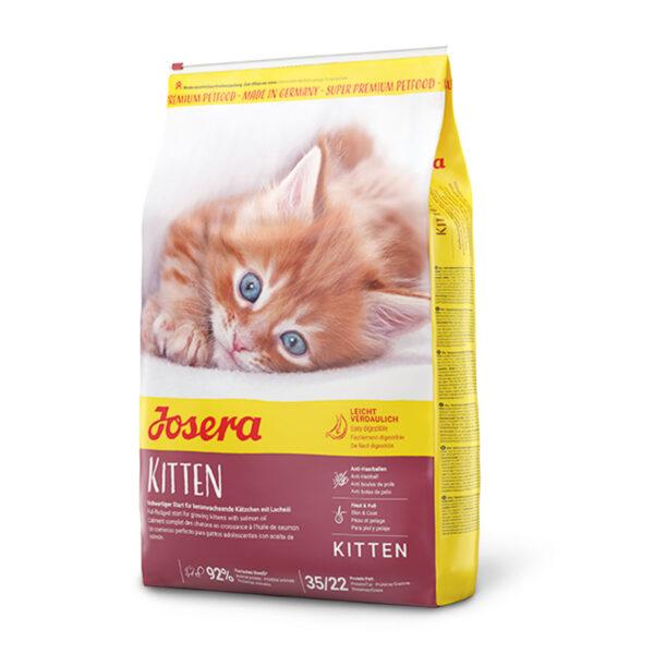 Kitten: con ave de corral