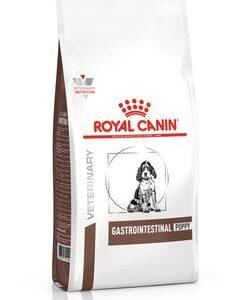 Gastrointestinal Puppy